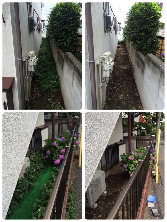 庭掃除・草刈作業例1